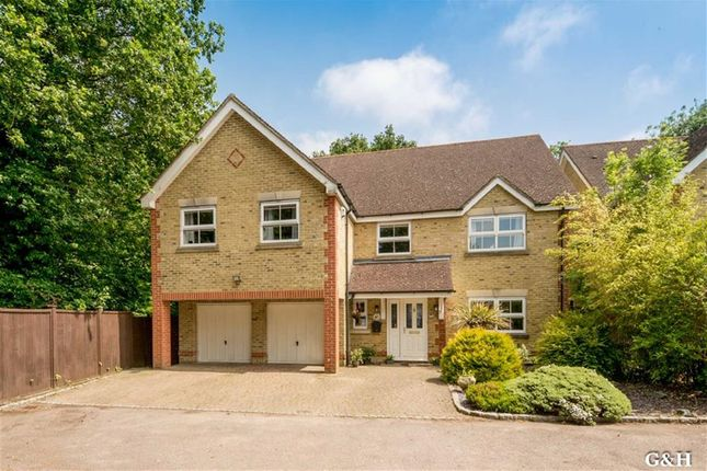 Thumbnail Detached house for sale in Leeswood, Ashford, Kent
