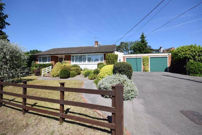 3 bed detached bungalow for sale in Middle Bourne Lane, Farnham, Surrey GU10