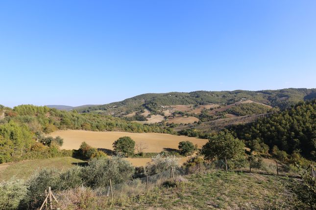 Borgo Ospicchio, Racchiusole, Perugia, View
