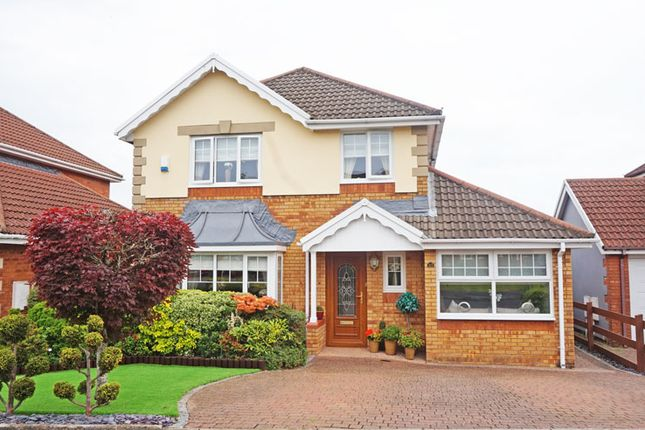 Thumbnail Detached house for sale in Gellideg Isaf Rise, Maesycwmmer, Hengoed