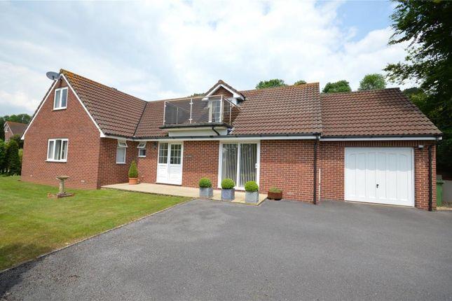 Thumbnail Detached bungalow for sale in Heathlands Rise, Teignmouth, Devon