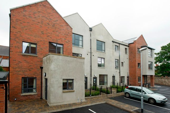 Thumbnail Flat to rent in 56 Rossmore Drive, Belfast