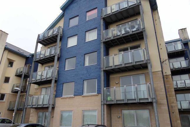 Thumbnail Flat to rent in Plas Hafod, Aberystwyth