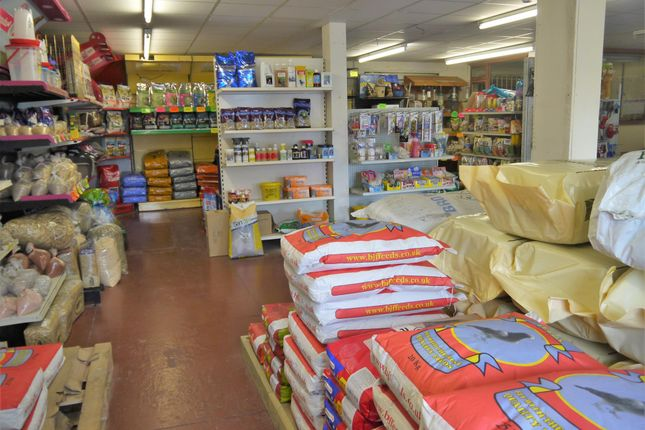 Photo 4 of Pets, Supplies & Services BD12, Wyke, West Yorkshire
