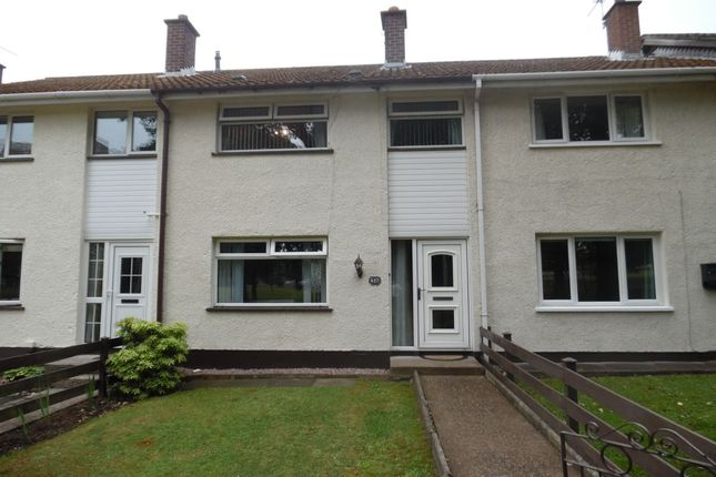 Thumbnail Terraced house to rent in The Oaks, Newtownabbey