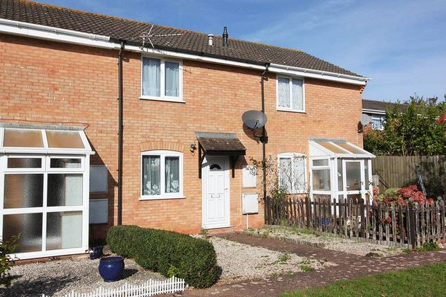 Thumbnail Terraced house to rent in Sargent Close, Exeter