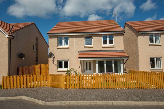 Thumbnail Detached house for sale in Rennie Drive, Dunbar, East Lothian