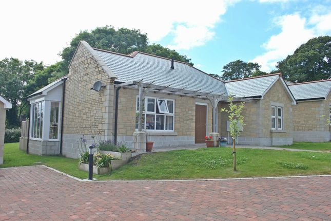 Thumbnail Detached bungalow to rent in Bickland Water Road, Falmouth