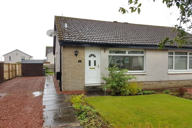 Thumbnail Bungalow to rent in North Avenue, Carluke