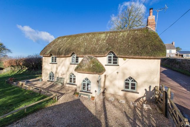 Thumbnail Cottage for sale in Thelbridge, Crediton