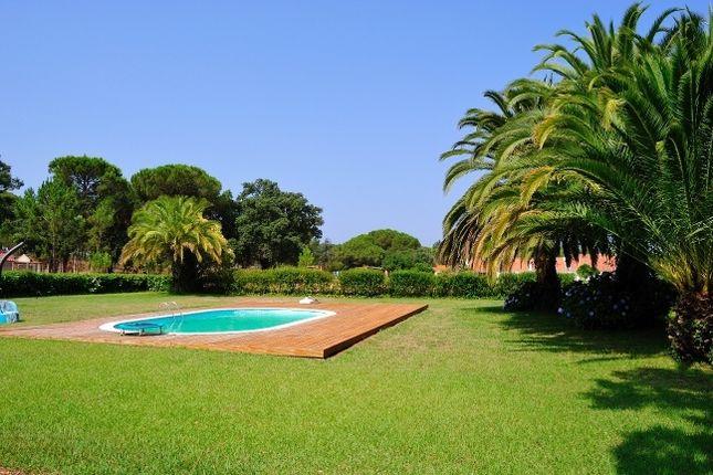 Thumbnail Property for sale in Rua Do Alentejo, 7565, Portugal
