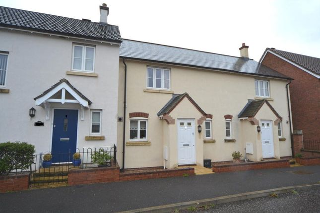 Thumbnail Terraced house to rent in Lupin Way, Willand, Cullompton