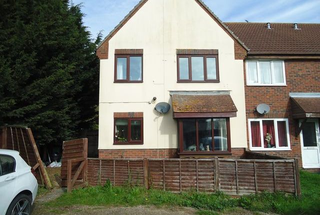 Thumbnail Property to rent in Cotswold Court, Colchester, Essex