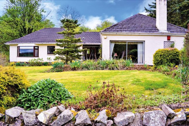 Thumbnail Detached bungalow for sale in Oak Orchard, Lanark, South Lanarkshire