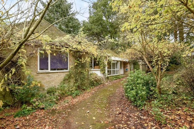 Thumbnail Detached house for sale in Bracknell, Berkshire