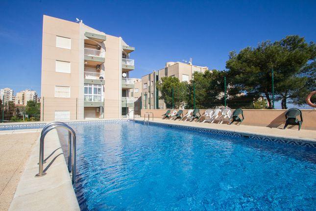 Thumbnail Apartment for sale in Calle San Sebastian, Torrevieja, Alicante, Valencia, Spain