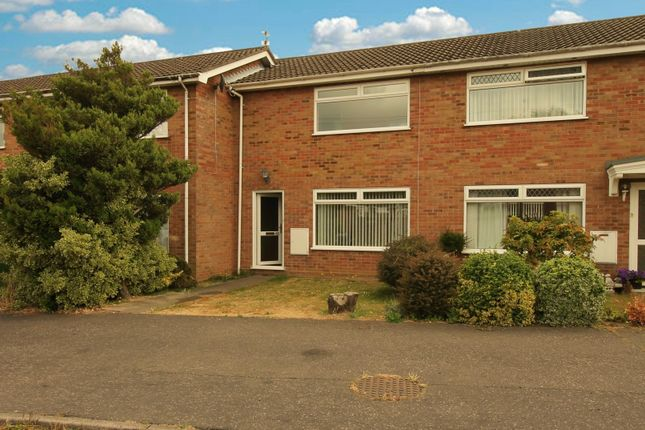 Thumbnail Terraced house to rent in Spruce Avenue, Ormesby, Gt Yarmouth