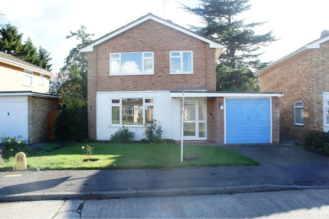 Thumbnail Link-detached house for sale in Smithers Drive, Chelmsford