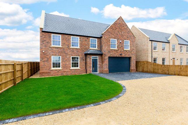 Thumbnail Detached house for sale in Askham Row, Doddington