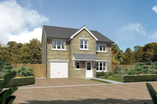 "Thumbnail Detached house for sale in ""Heddon"" at Meikle Earnock Road, Hamilton"