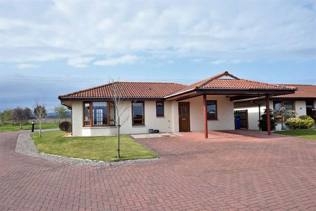 Thumbnail 2 bed detached bungalow for sale in Highland Park, Invergordon, Ross-Shire