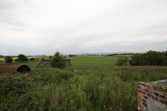 Thumbnail Detached bungalow to rent in Small Holdings, Sauchenford, Plean, Stirling