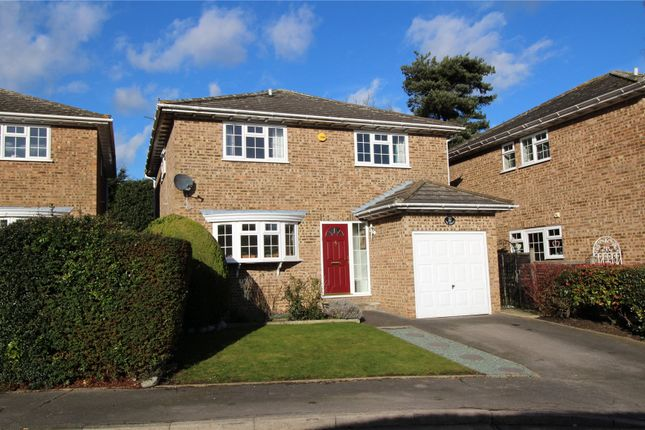 Thumbnail Detached house for sale in The Robins, Hook End, Brentwood, Essex