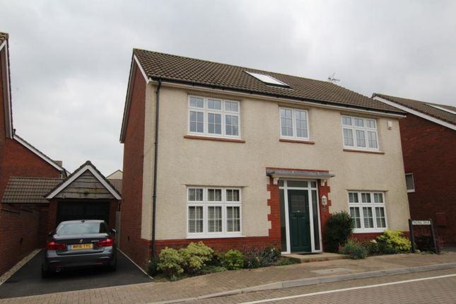 Thumbnail Detached house to rent in Tinding Drive, Cheswick Village, Bristol
