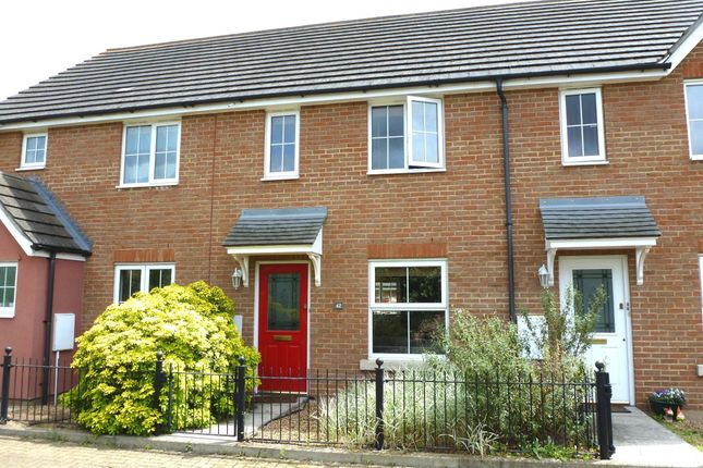 Thumbnail Property to rent in Caracalla Way, Colchester