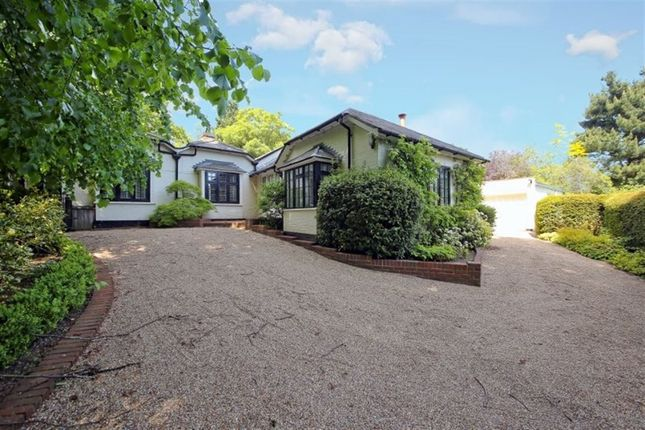 Thumbnail Bungalow to rent in Wildernesse Avenue, Sevenoaks