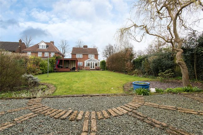 Thumbnail Detached house for sale in Ipswich Road, Eaton Rise, Norwich, Norfolk