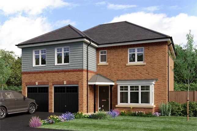 "Thumbnail Detached house for sale in ""The Jura"" at Sadberge Road, Middleton St. George, Darlington"