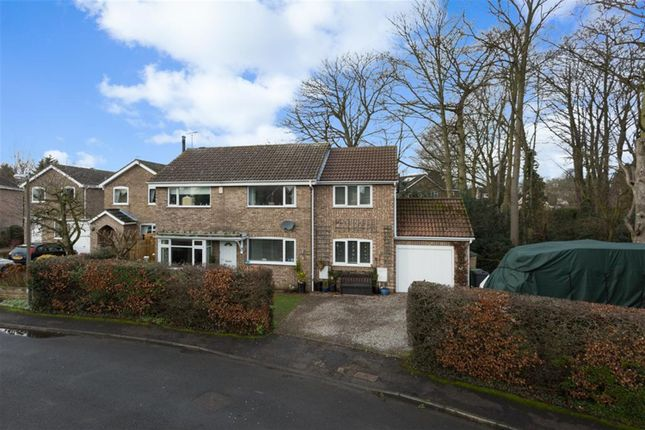 Thumbnail Detached house for sale in Arthur Place, Skelton, York