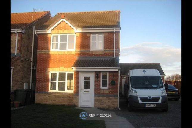 Thumbnail Detached house to rent in Viscount Close, Hartlepool