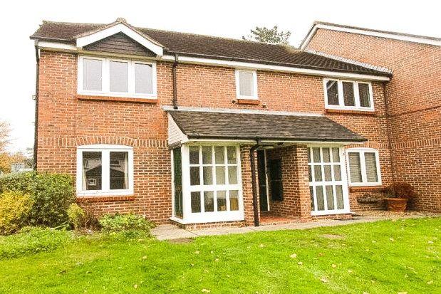 Thumbnail Flat to rent in Oakwood Close, Midhurst