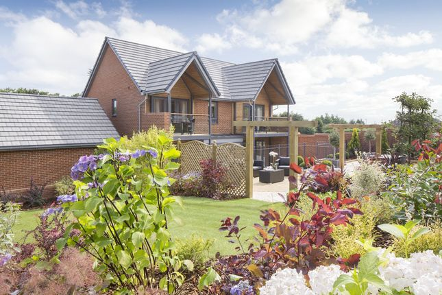 "Thumbnail Detached house for sale in ""Ula"" at Bedhampton Hill, Bedhampton, Havant"