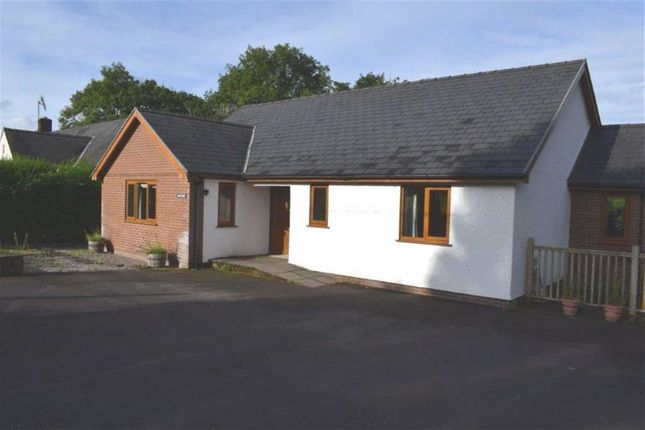 Thumbnail Detached bungalow to rent in Hendre, Cwmllinau, Nr Machynlleth, Powys