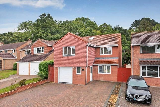 Thumbnail Detached house for sale in Canterbury Way, Exmouth