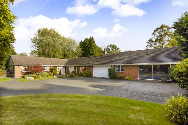 Thumbnail 5 bed bungalow for sale in Glen Close, Kingswood, Tadworth