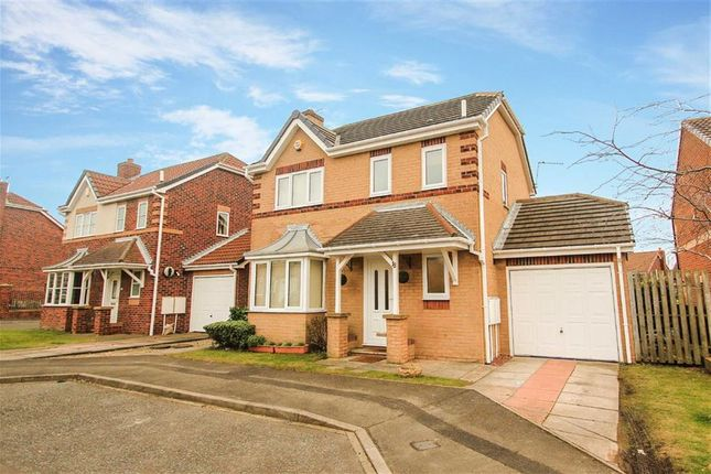 Thumbnail Detached house to rent in Robert Westall Way, North Shields