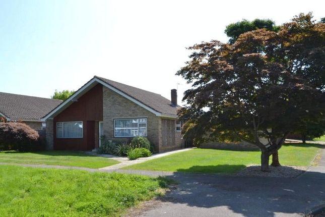 Thumbnail Detached bungalow for sale in Correnden Road, Tonbridge