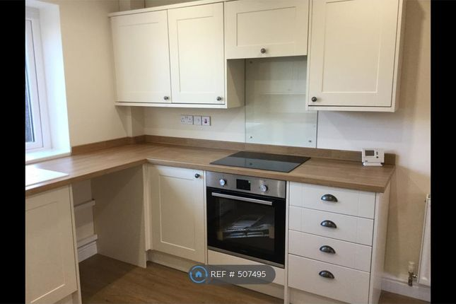 Kitchen Cooker With Hood