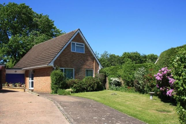 3 bed detached bungalow for sale in St. Anthonys Close, Ottery St. Mary