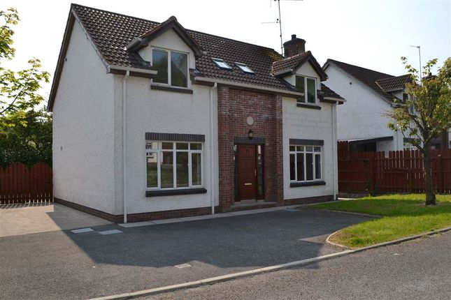 Thumbnail Detached house for sale in 14, Drumgarrow Court, Enniskillen