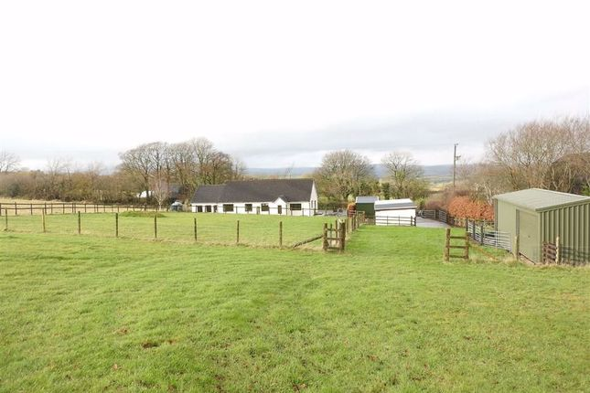 Thumbnail Detached bungalow for sale in Capel Iwan, Newcastle Emlyn, Carmarthenshire