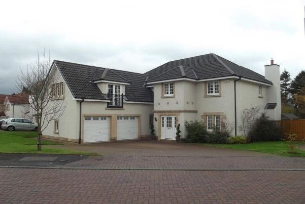 Thumbnail Detached house to rent in Bellefield Way, Lanark