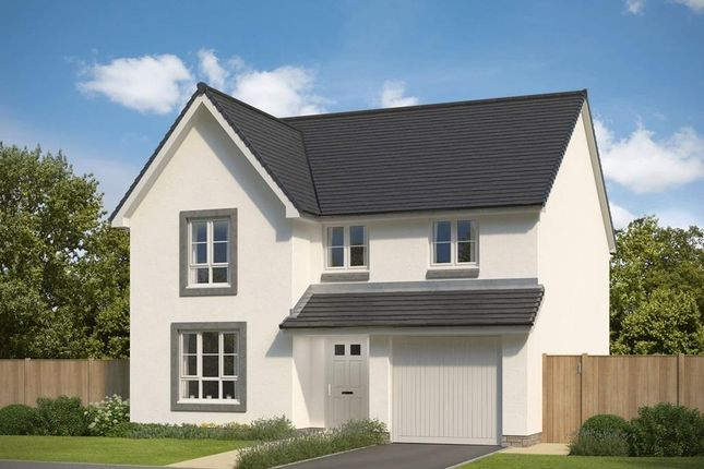 """Thumbnail Detached house for sale in """"Cullen"""" at Park Place, Newtonhill, Stonehaven"""