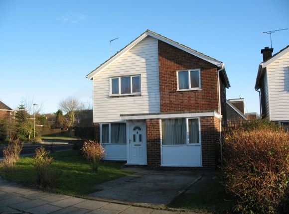 Thumbnail Detached house to rent in Salisbury Road, Canterbury, Kent