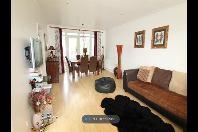 Thumbnail Detached house to rent in Albert Road, Orpington