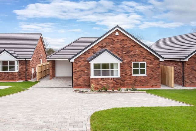 Thumbnail Detached house for sale in Meadow Avenue, Congleton
